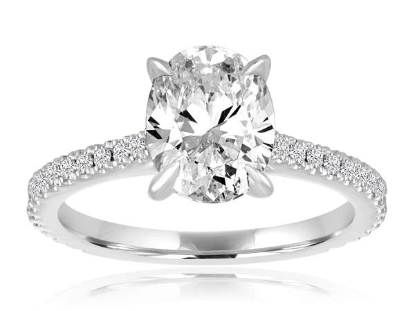 Oval Cathedral Engagement Semi Mount 1/4ctw by Imagine Bridal
