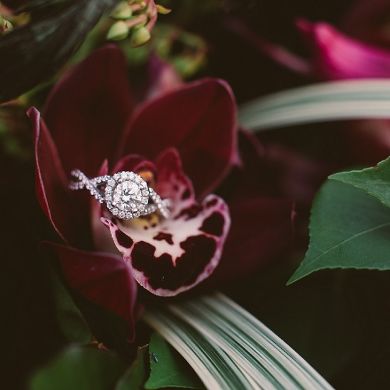 diamond halo engagement rings austin tx